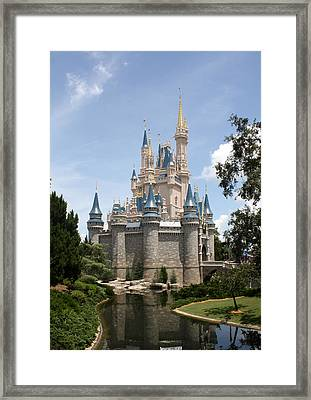 Magic In The Sunshine Framed Print