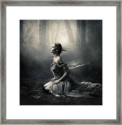 Magic Light Framed Print by Cindy Grundsten