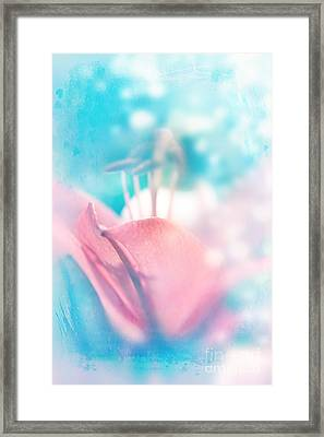 Magic Lily  Framed Print