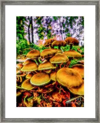 Magic Mushroom-1 Framed Print