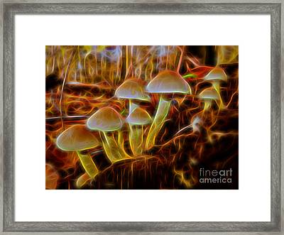Magic Mushroom-3 Framed Print