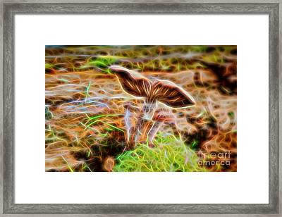 Magic Mushroom-5 Framed Print