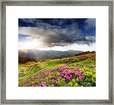 Framed Print featuring the photograph Magic Pink Summer Mountain by Boon Mee