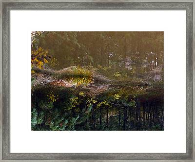 Magic Reflection Framed Print
