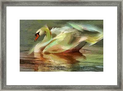 Magic Swan Framed Print