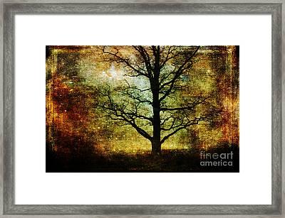Magic Night Framed Print