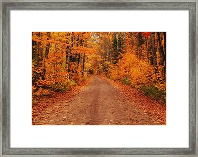 Magical Autumn Mystery Framed Print by Rachel Cohen