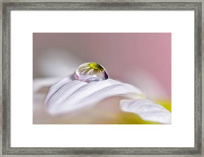 Magical Drop Framed Print