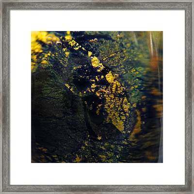 Magical Dust Framed Print by Gaby Tench