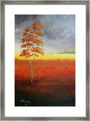 Magical Field Framed Print