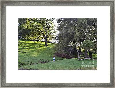 Magical Forest2 Framed Print