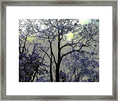 Magical Garden Framed Print