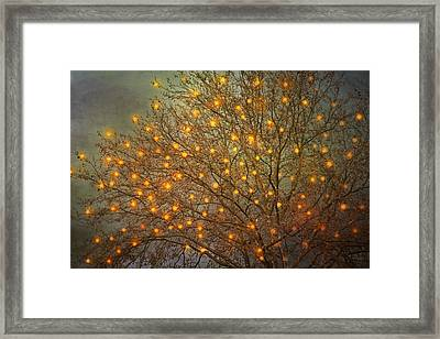 Magical II Framed Print by Violet Gray
