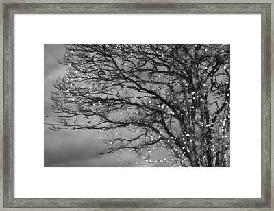 Magical In Black And White Framed Print by Violet Gray