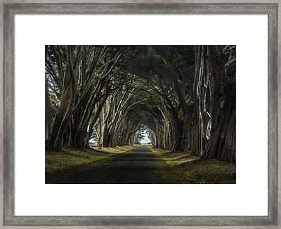 Magical Framed Print