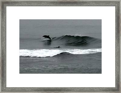 Magical Moment Framed Print by Jan Cipolla