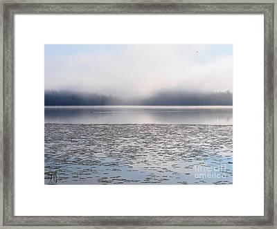 Magical Morning Of Mist Framed Print