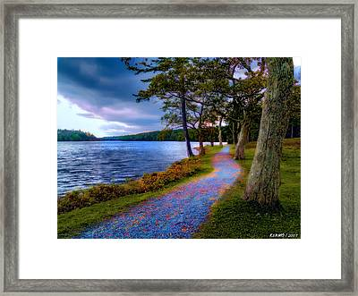 Magical Path Framed Print
