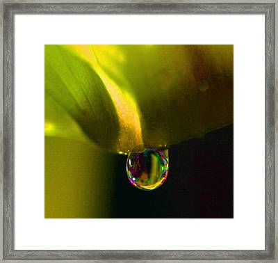 Magical Raindrop Framed Print