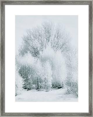 Magical Snow Palace Framed Print by Georgiana Romanovna