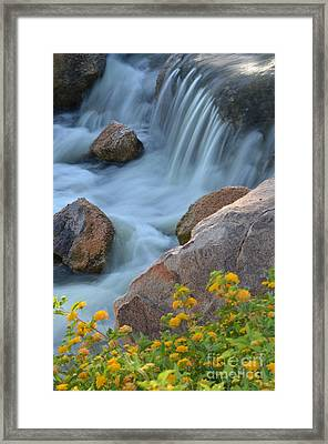 Magical Waters Framed Print by Deb Halloran