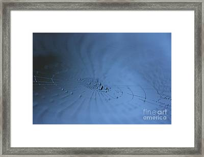 Magical Web 3 Framed Print by Rebeka Dove
