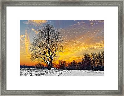 Magical Winter Sunset Framed Print by William Jobes