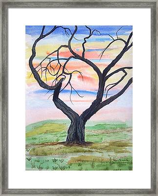 Magic Mesquite Framed Print
