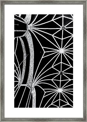 Magnetic Field Lines Framed Print by Arkady Kunysz