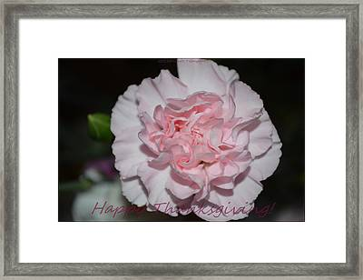 Magnetic Pink Framed Print