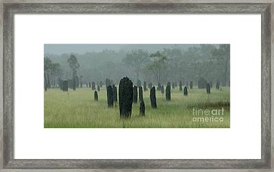 Magnetic Termite Mounds Framed Print by Bob Christopher