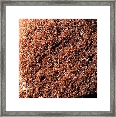 Magnification Of Grain Of Sandstone Rock Framed Print by Dorling Kindersley/uig