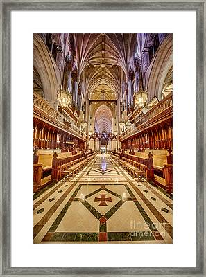 Magnificent Cathedral Iv Framed Print