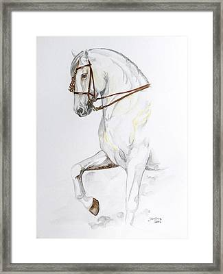 Magnificent Framed Print by Janina  Suuronen