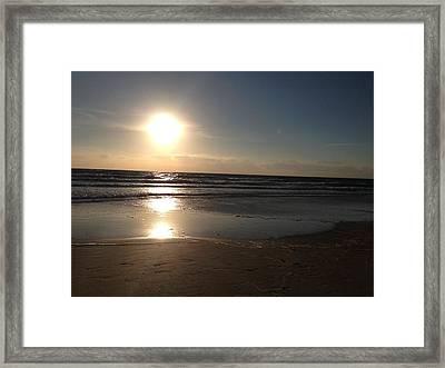 Magnificent Life Framed Print