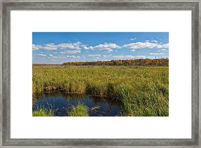 Magnificent Minnesota Marshland Framed Print