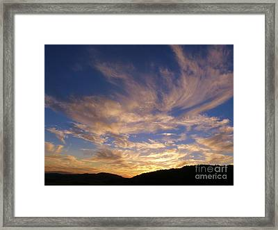 Magnificent Whimsy Framed Print by Jacquelyn Roberts