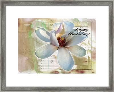 Magnolia 4 Framed Print