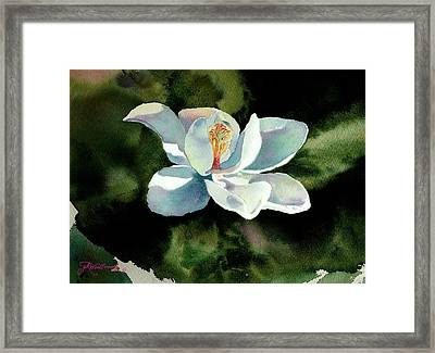 Magnolia At Starwood Glen Framed Print