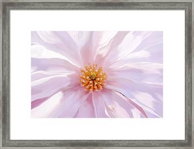 Magnolia Bloom - Digital Art Framed Print