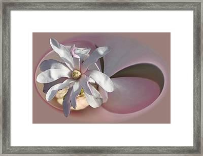 Magnolia Blossom Series 707 Framed Print