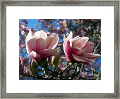 Magnolia Blossoms Framed Print by Ric Darrell
