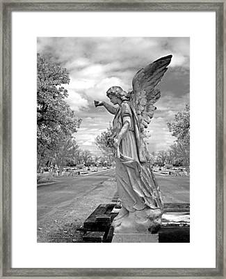 Magnolia Cemetery In Mobile Alabama Framed Print by Terry Reynoldson