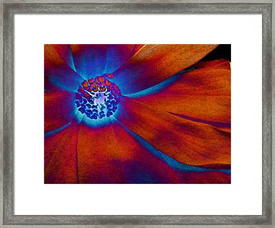 Framed Print featuring the photograph Magnolia Electric by Susan Maxwell Schmidt