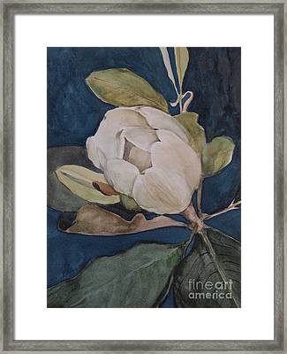 Magnolia Evening Framed Print by Nancy Kane Chapman