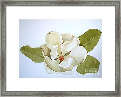 Magnolia Highlight Framed Print by Nancy Kane Chapman