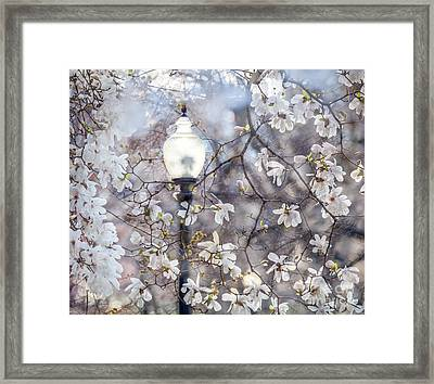 Magnolia Impression Blend Framed Print