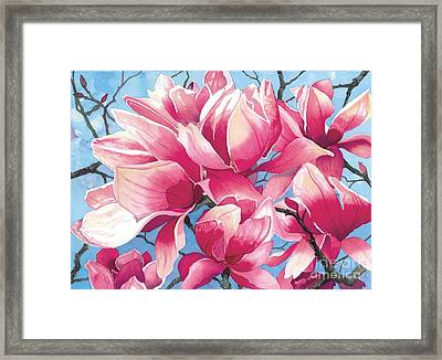 Magnolia Medley Framed Print by Barbara Jewell