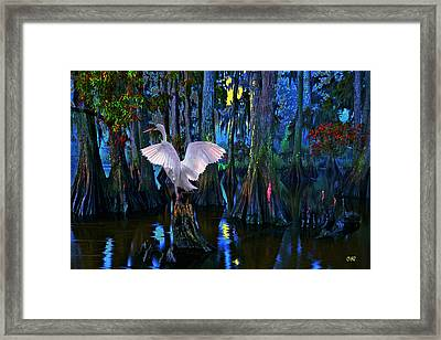Magnolia Moon Framed Print