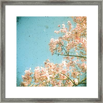 Magnolia Tree Framed Print by Cassia Beck